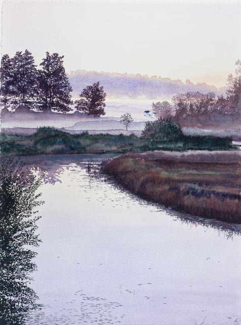 Blå Kärrhök, 56 x 76 cm