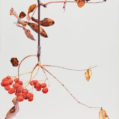 Oktober, 56 x 76 cm